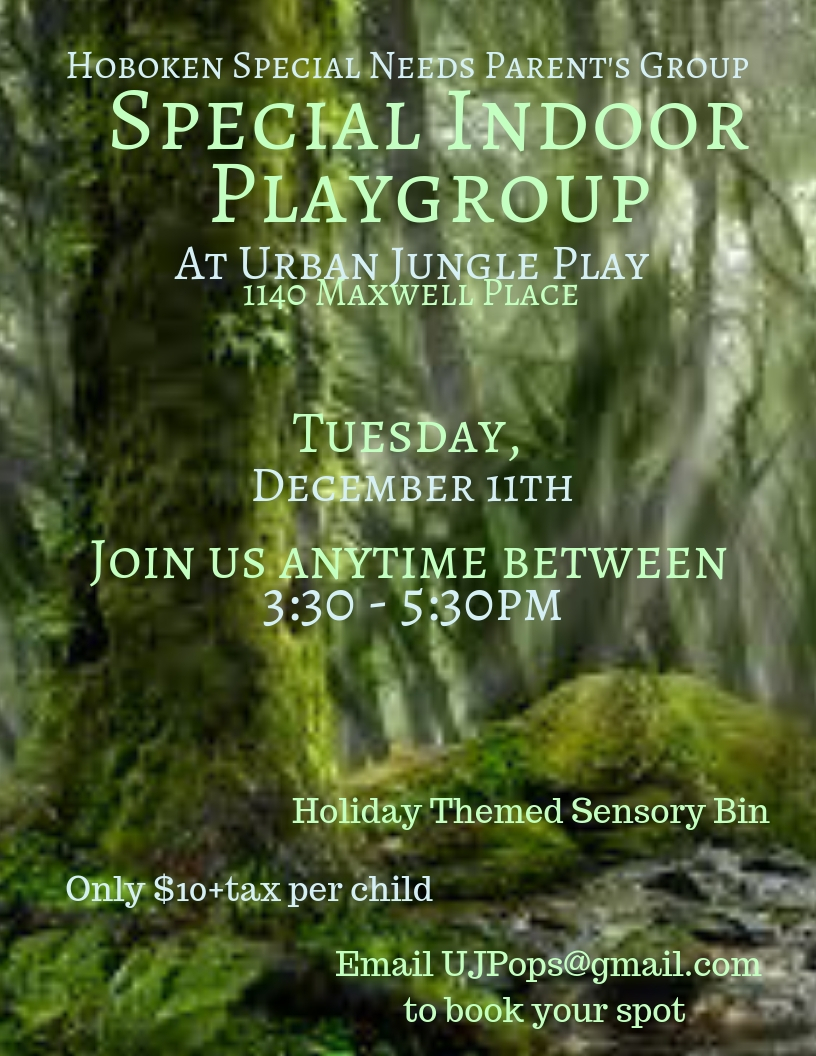 Special Indoor Playgroup - December 18